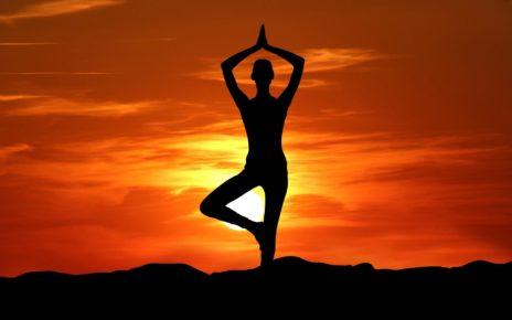 Surya Namaskar A Sequence of Yoga Asanas